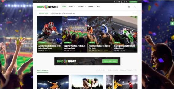 Bingo - 42+ Amazing Sport Magazine WordPress Themes [year]