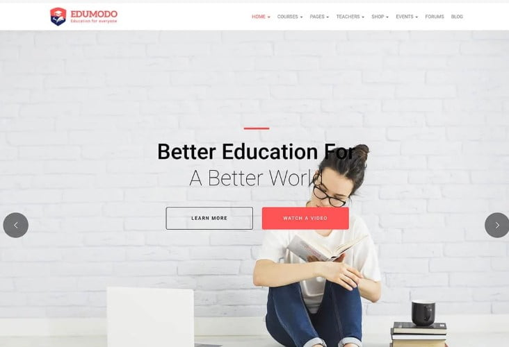 Edumodo - 35+ Impressive WordPress Online Course Themes [year]