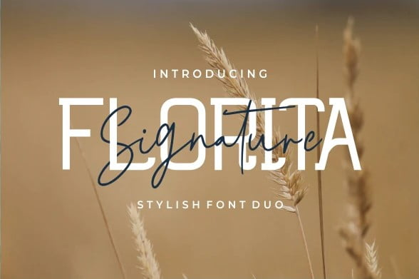 Florita - 38+ Attractive Handwriting & Signature Fonts [year]