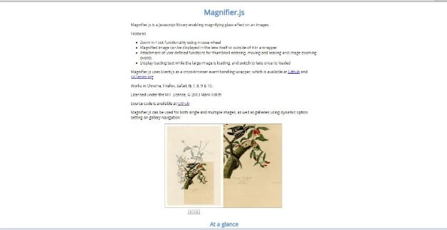Magnifier - 34+ Important Web & Mobile Zoom Libraries [year]