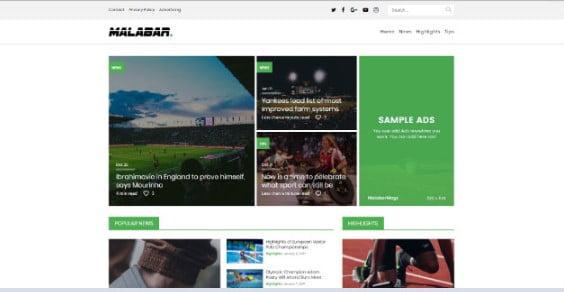 Malabar - 42+ Amazing Sport Magazine WordPress Themes [year]