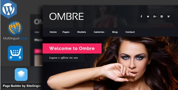 OMBRE - 37+ Awesome Actors WordPress Themes [year]