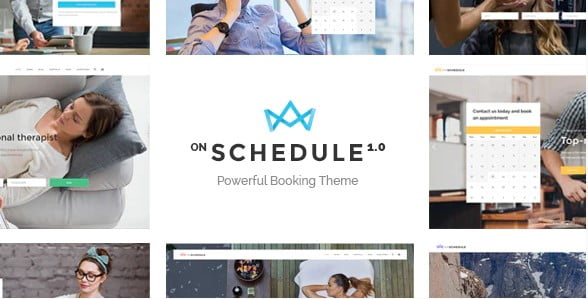 OnSchedule - 37+ Awesome WordPress Booking Themes [year]