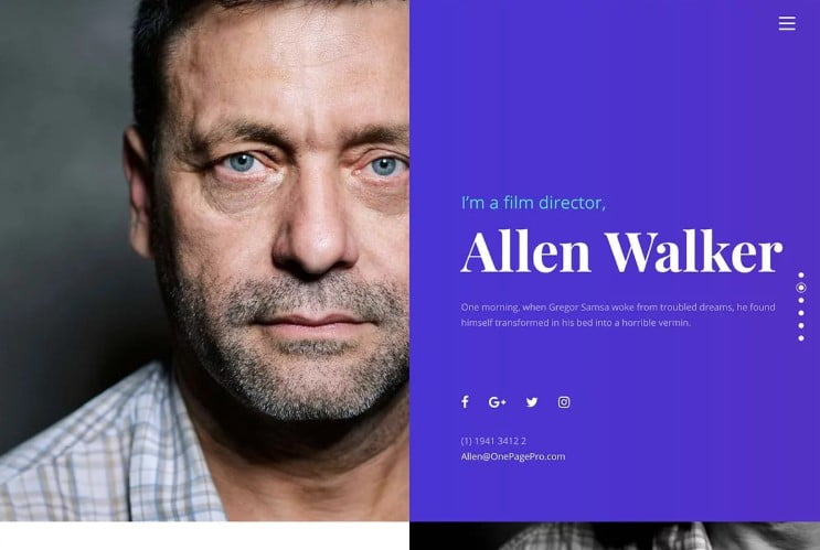 One-Page-Pro - 37+ Awesome Actors WordPress Themes [year]