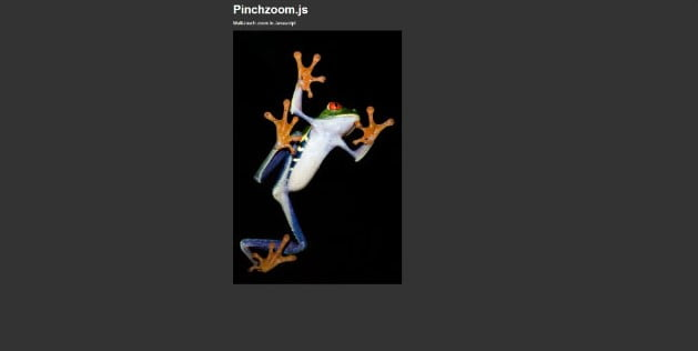 PinchZoom - 34+ Important Web & Mobile Zoom Libraries [year]