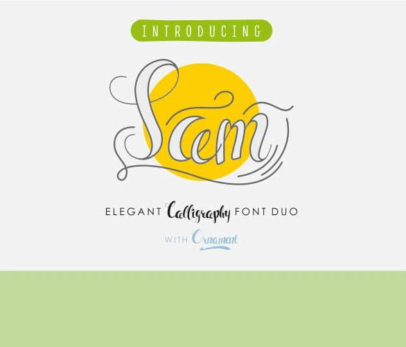 SAM - 53+ Best Free Calligraphy & Hand Lettering Fonts [year]