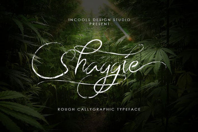 Shaggie - 38+ Attractive Handwriting & Signature Fonts [year]