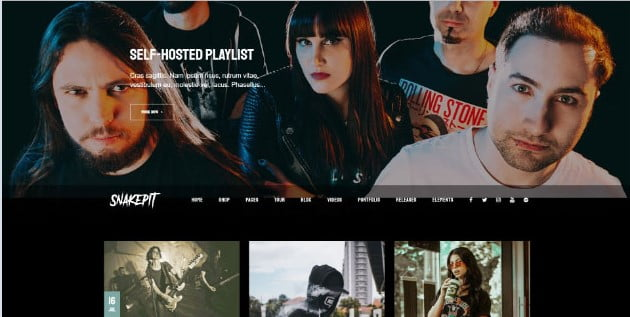Snakepit - 33+ Awesome Music Blog Responsive WordPress Themes [year]