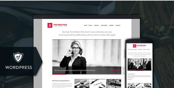 The-Practice - 35+ Awesome WordPress Government Themes [year]