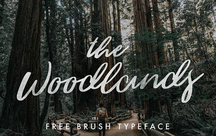 The-Woodland - 53+ Best Free Calligraphy & Hand Lettering Fonts [year]