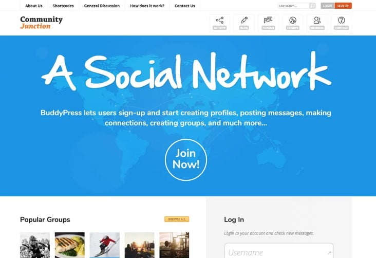 Buddy - 35+ Responsive WordPress Community Themes [year]