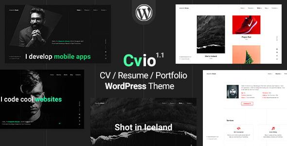 Cvio - 35+ GREAT WordPress Resume Themes [year]