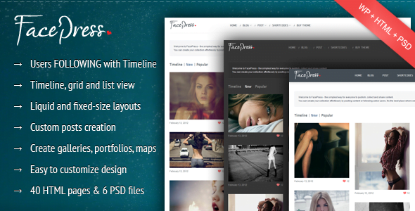 FacePress - 35+ Responsive WordPress Community Themes [year]