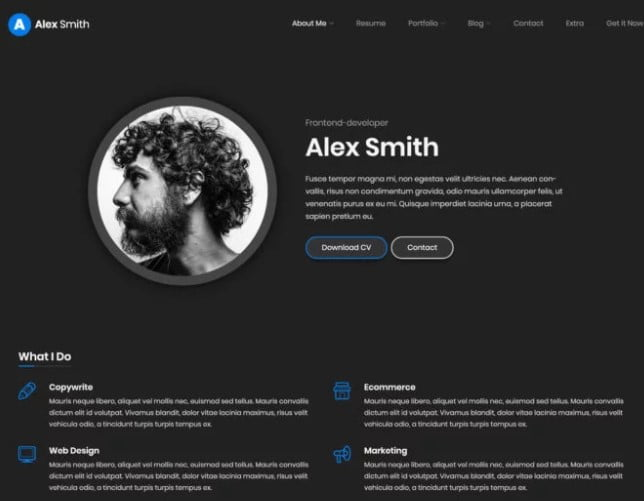 Leven-1 - 35+ GREAT WordPress Resume Themes [year]
