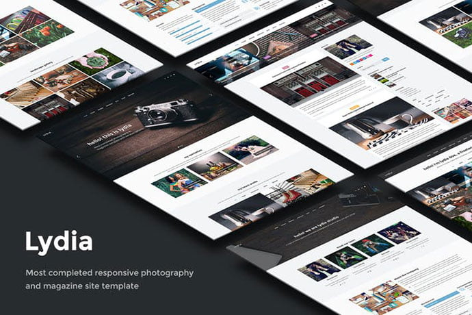 Lydia - 35+ NICE CSS HTML Website Templates [year]