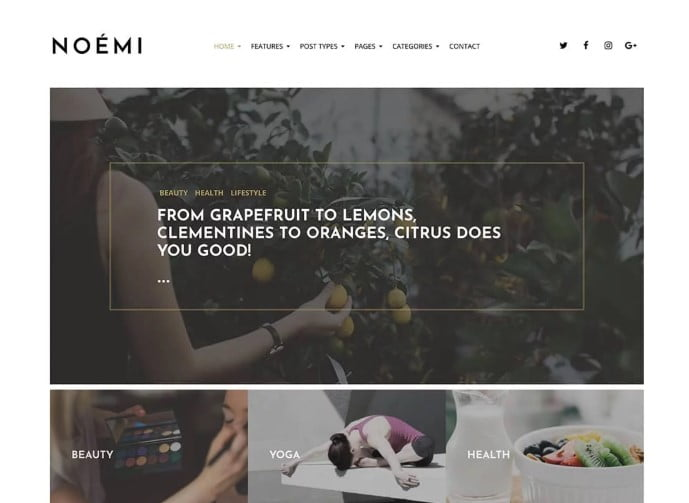 Noemi - 35+ TOP WordPress Lifestyle Themes [year]