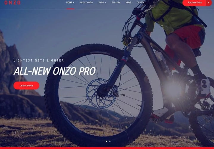 Onzo - 36+ Awesome WordPress Single Product Themes [year]