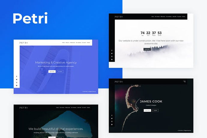 Petri - 35+ NICE CSS HTML Website Templates [year]