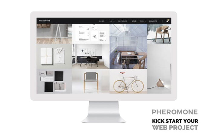 Pheromone - 35+ NICE CSS HTML Website Templates [year]