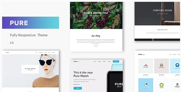 Pure - 36+ Awesome WordPress Single Product Themes [year]