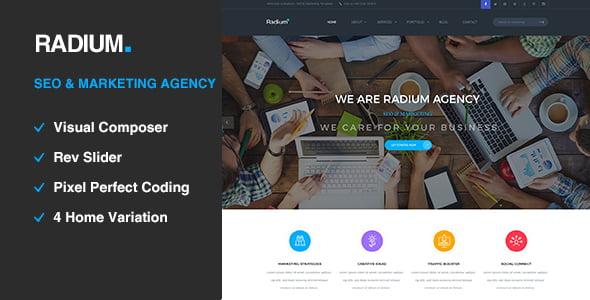 Radium - 36+ Amazing WordPress SEO Agency Themes [year]
