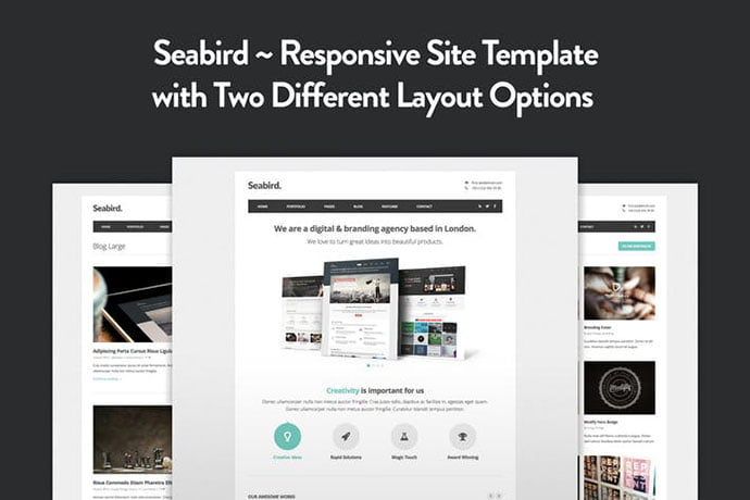 Seabird - 35+ NICE CSS HTML Website Templates [year]