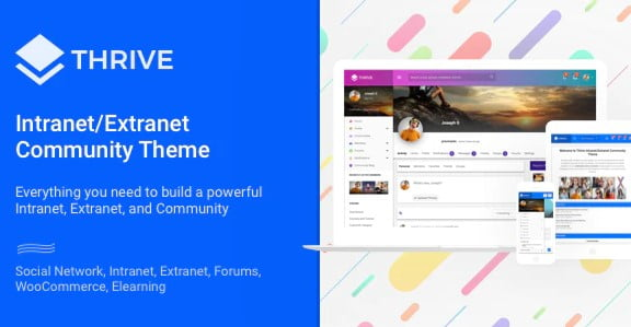 Thrive-2 - 30+ AWESOME WordPress Intranet Themes [year]