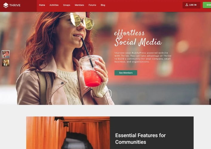 Thrive - 35+ Responsive WordPress Community Themes [year]