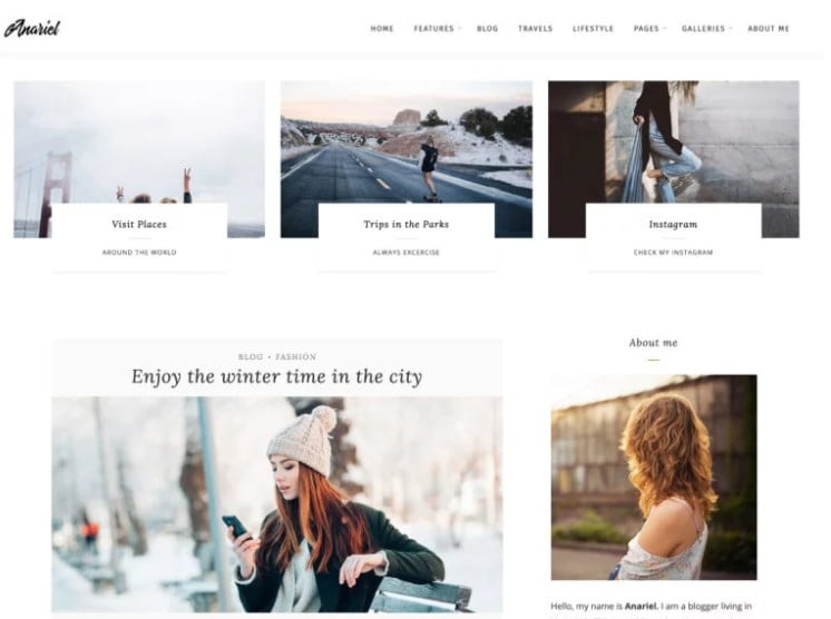 Anariel-Lite - 35+ BEST Free WordPress Minimalist Themes [year]