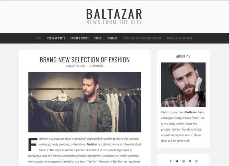 Baltazar-Lite - 35+ BEST Free WordPress Minimalist Themes [year]