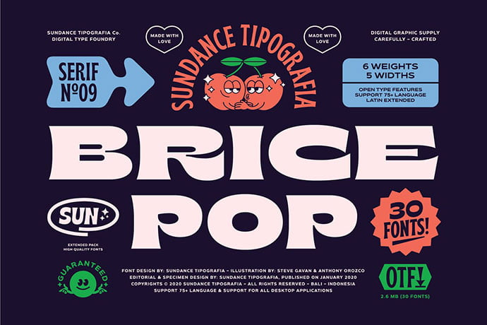 Brice - 38+ TOP BEST Bold Display Fonts [year]
