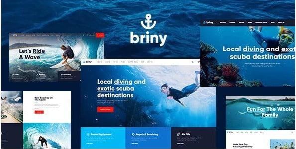 Briny - 35+ TOP Surfing Website WordPress Themes [year]