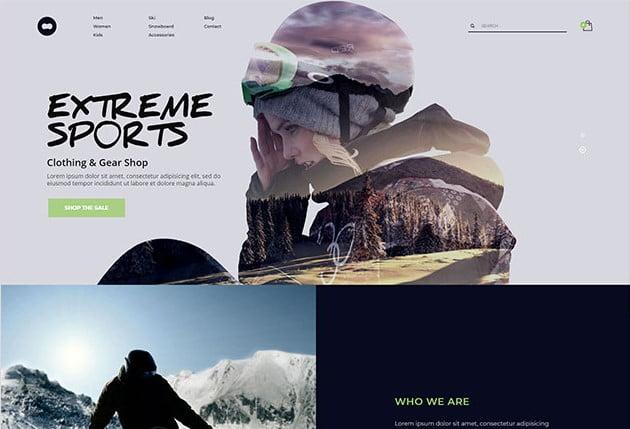KALLYAS - 35+ TOP Surfing Website WordPress Themes [year]
