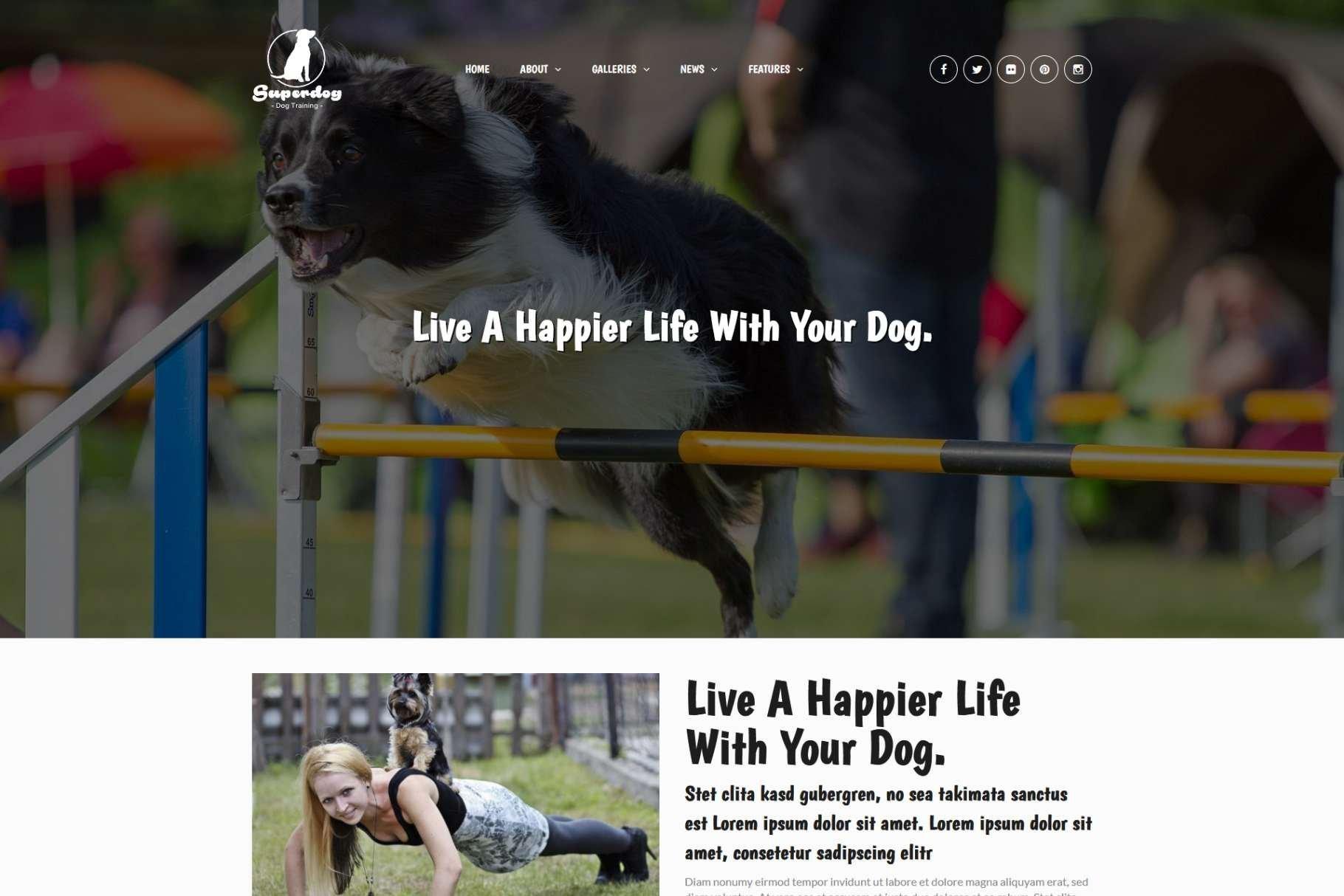 Superdog - 34+ BEST Psychologists, Therapists WordPress Themes [year]
