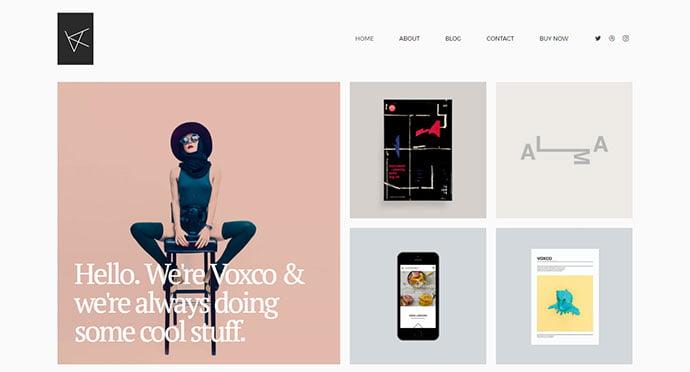 Voxco - 43+ BEST WordPress Minimalist Portfolio Themes [year]