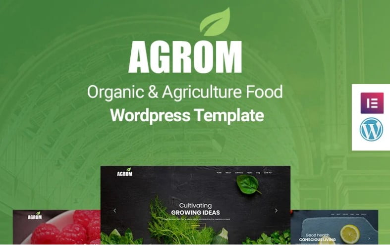 Agrom - 33+ TOP Food & Drink WordPress E-Commerce Themes [year]