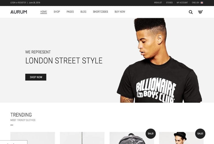Aurum - 47+ AWESOME WordPress Woocommerce Themes [year]