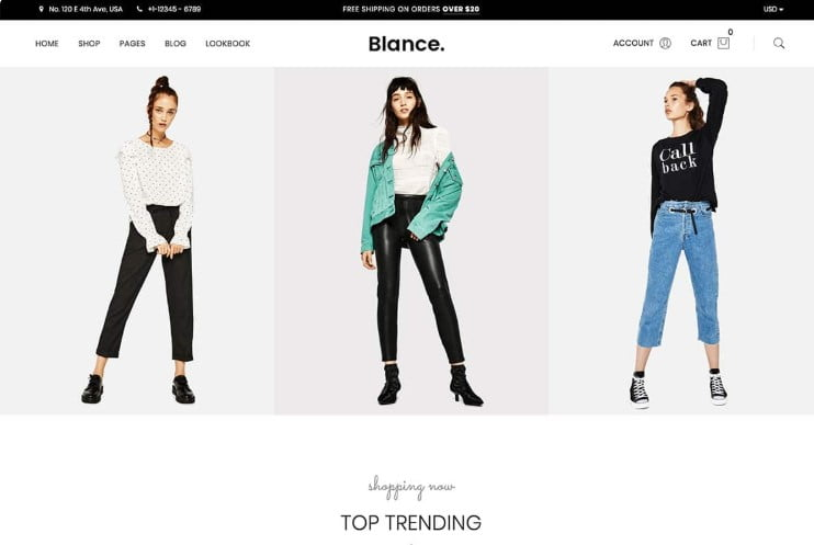 Blance - 47+ AWESOME WordPress Woocommerce Themes [year]