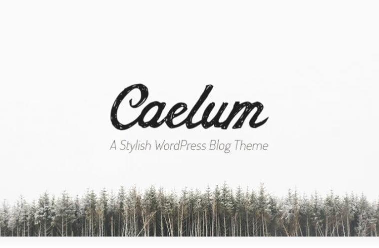 Caelum - 36+ GREAT Designers WordPress Themes [year]