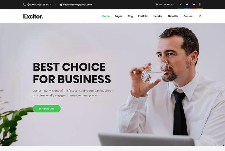 Excitor - 33+ TOP WordPress Consulting Themes [year]