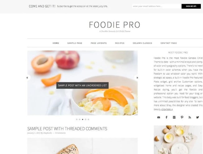 Foodie-Pro - 41+ AMAZING WordPress Food Themes For Recipes [year]