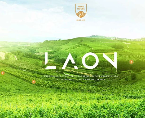Laon - 28+ NICE WordPress Wine Themes [year]