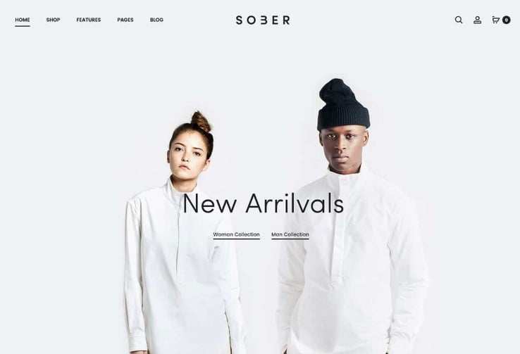 Sober - 47+ AWESOME WordPress Woocommerce Themes [year]
