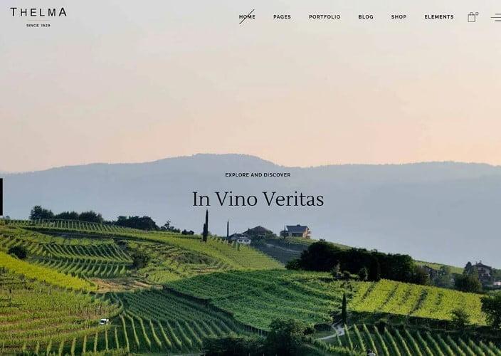 Thelma - 28+ NICE WordPress Wine Themes [year]