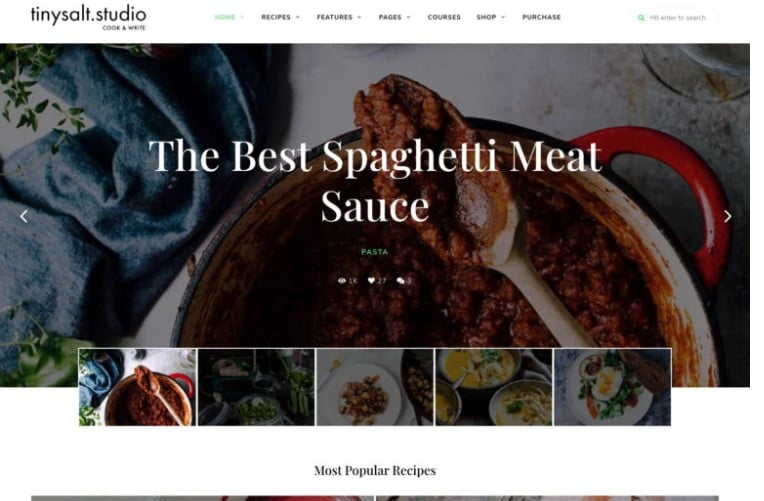 TinySalt - 41+ AMAZING WordPress Food Themes For Recipes [year]