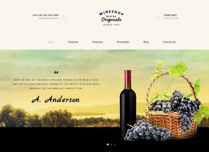 WineShop - 28+ NICE WordPress Wine Themes [year]