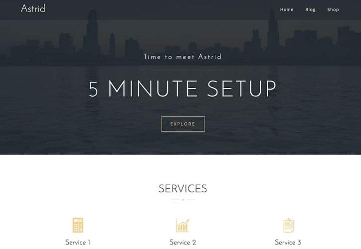 Astrid - 39+ BEST FREE WordPress Portfolio Themes [year]