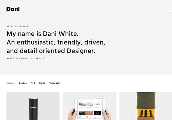 Dani - 37+ GREAT Freelancers WordPress Themes [year]