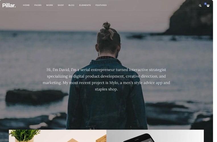 Pillar - 37+ GREAT Freelancers WordPress Themes [year]