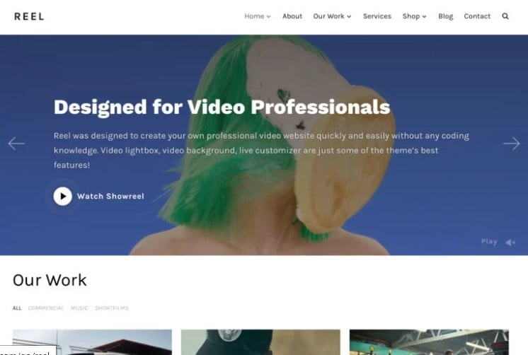 Reel - 36+ GREAT Videographers WordPress Themes [year]